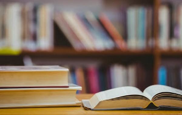Кампания «Библиотечная ночь 2020» стартовала в Кишиневе