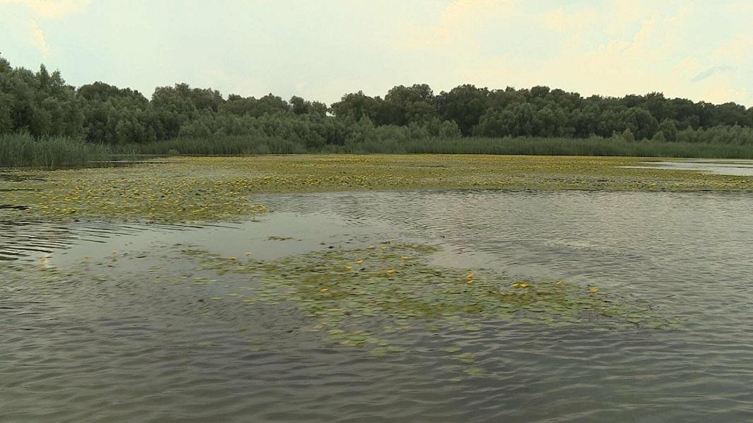 В Молдове объявлен желтый код гидрологической опасности